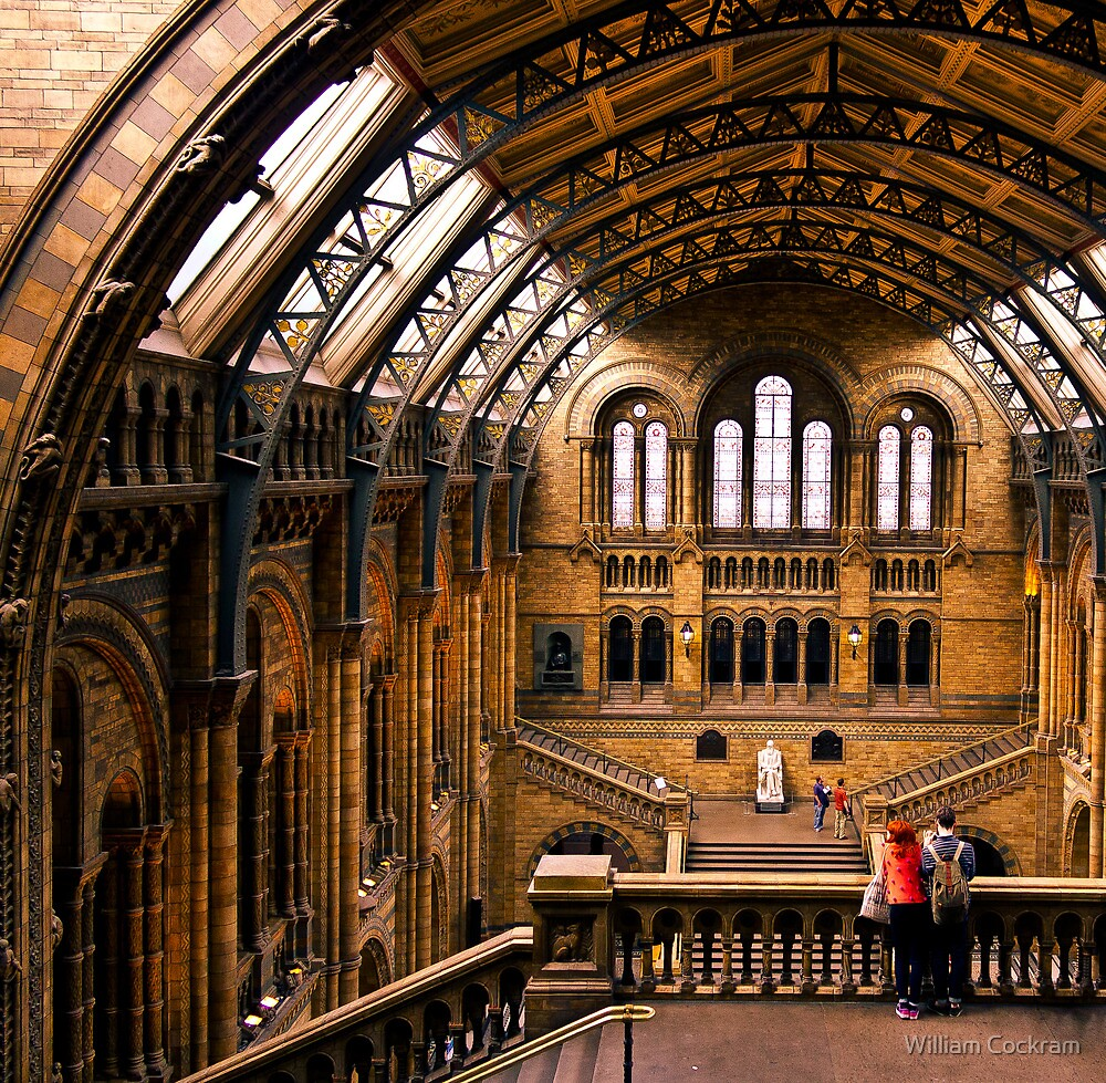 Natural History Museum by William Cockram
