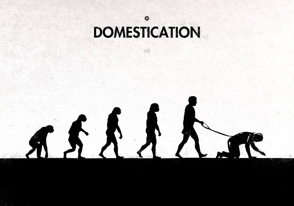99 Steps of Progress - Domestication by maentis