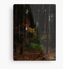 Low key foliage  Metal Print