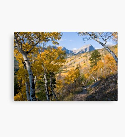 Fall Hike Canvas Print