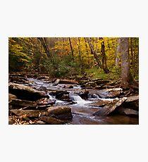 Hills Creek Photographic Print