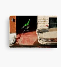 Neen Williams- Kick Flip- photo Ely Phillips Canvas Print