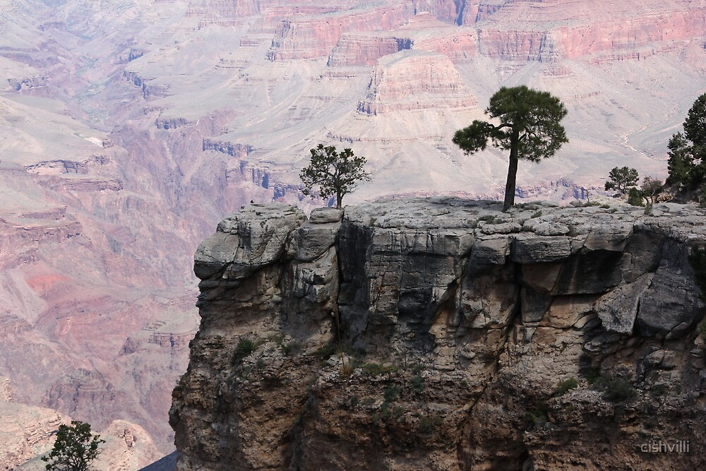 The Lonely Tree by cishvilli