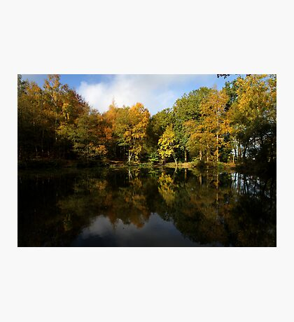 Autumn in Bucklebury Photographic Print