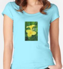 Closeup Of A Tropical Yellow Canna Lily Women's Fitted Scoop T-Shirt