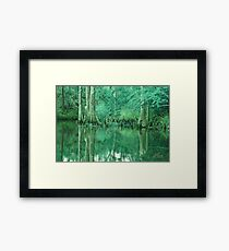 BOLD EMERALD GREEN BAYOU Framed Print