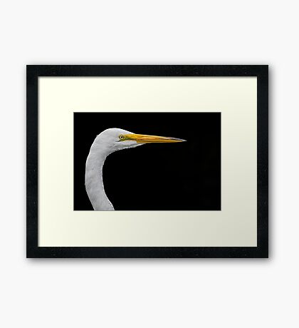 White on black Egret Framed Print
