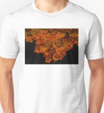 ablaze - fall leaves at night T-Shirt