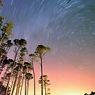 Outer Banks Night by Robin Black