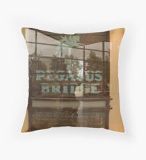 Reflection on the Para's Throw Pillow