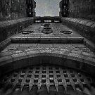 Demon Door by Nikki Smith (Brown)