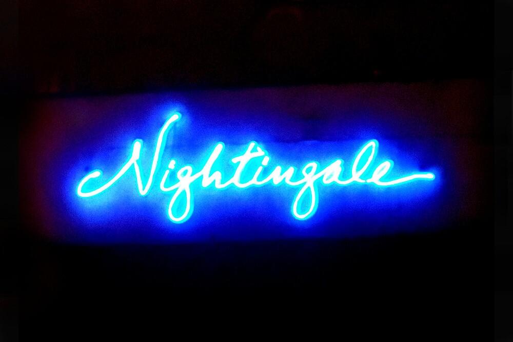 Nightingales by field9