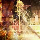 Fountain of Coloured Champagne. by Heather Goodwin