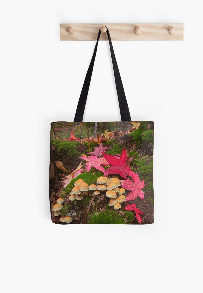 Autumn Floor by Patricia Jacobs DPAGB BPE4