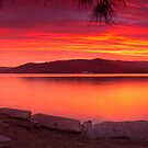 Gosford Canvas by Dave  Gosling Photography
