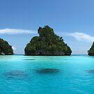 Raja Ampat & West Papua by Reef Ecoimages