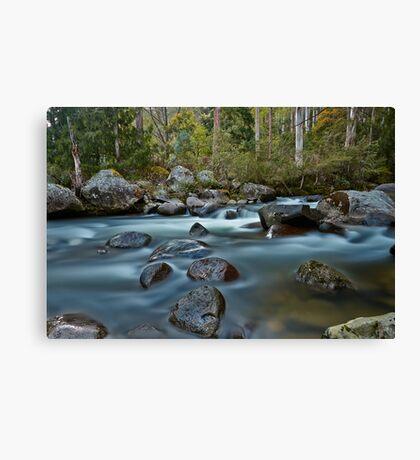 The River Wild Canvas Print