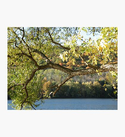 Autumn In The Ramapos Photographic Print