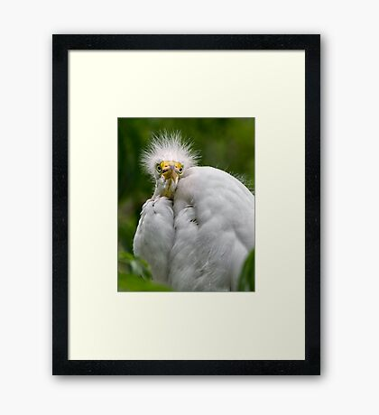 Mommy...?? Framed Print