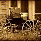 Carriage © by Dawn Becker