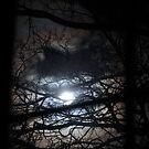 Full Moon by yuliekayy