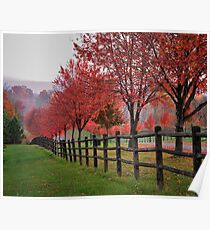 Ohio country roads in autumn  Poster
