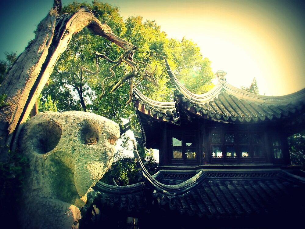 Lion Grove Garden House and Tree, Suzhou, China by Chris Millar