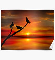 Birds at Sunset point-2 Poster