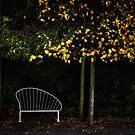 Single Seat by timmburgess