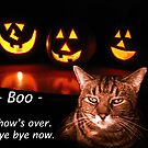 Boo by Michael Taggart