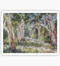 Lake Innes Nature Reserve 2 - plein air Sticker