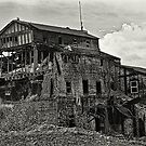 Gristmill Ruin - Platinum Toned by Brenton Cooper