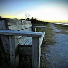 Pea Island, Outer Banks, NC by Robin Black