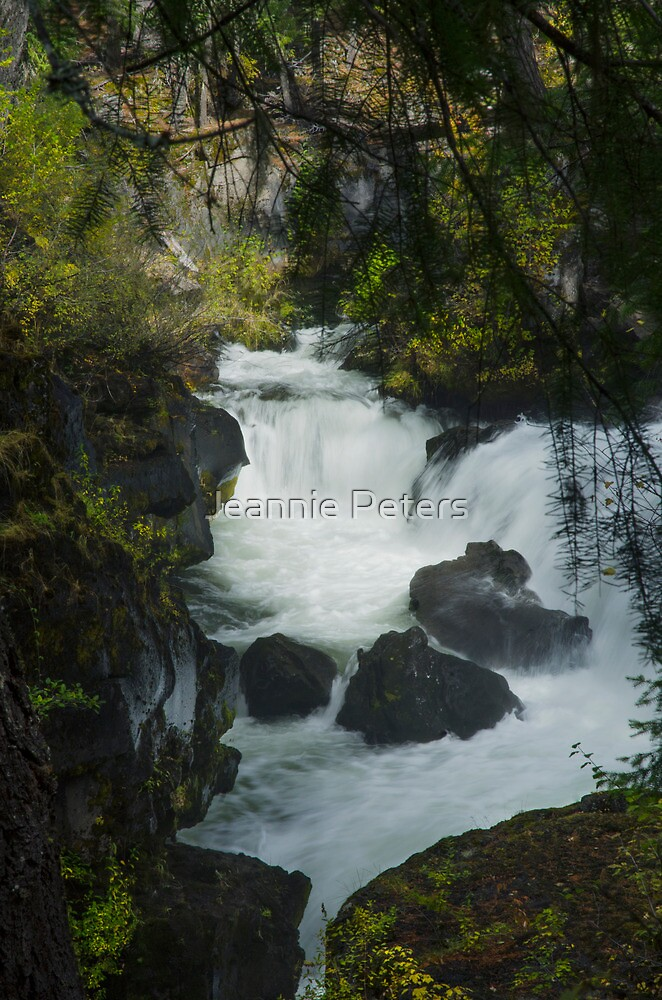 The Rogue River Gorge by Jeannie Peters