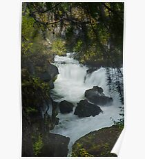 The Rogue River Gorge Poster