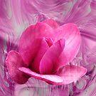 Magnolia Vulcan by Dale Lockridge