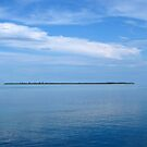 Pulau Reni at Midday by Reef Ecoimages