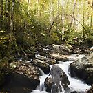 Smith Creek by Widcat