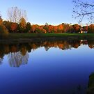 Autumn Afternoon, River Tees, Croft on Tees by Ian Alex Blease