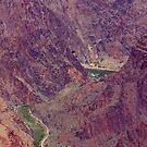 Colorado River by Nancy Richard