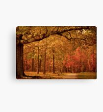 Amber Afternoon Canvas Print