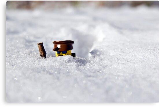 Deep Snow by Dan Phelps