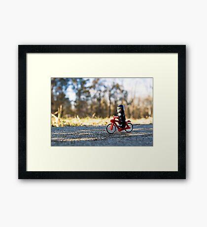 Gorillas bike, too Framed Print