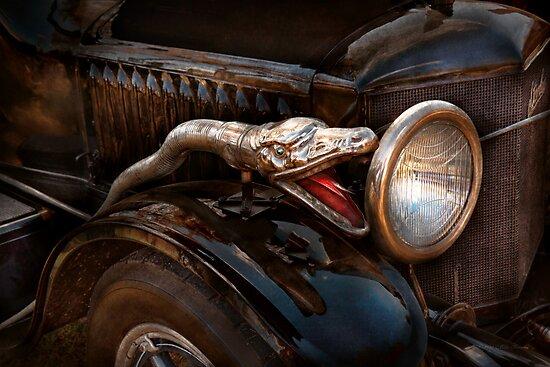 Car - Steamer - Snake Charmer  by Michael Savad