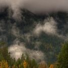 Kootenay Fall by James Anderson