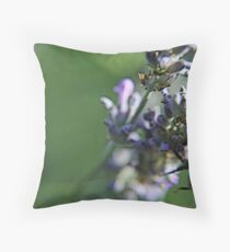 Bee on lavanda flower Throw Pillow