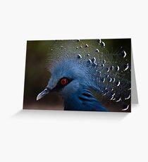Blue Crowned Pigeon Greeting Card