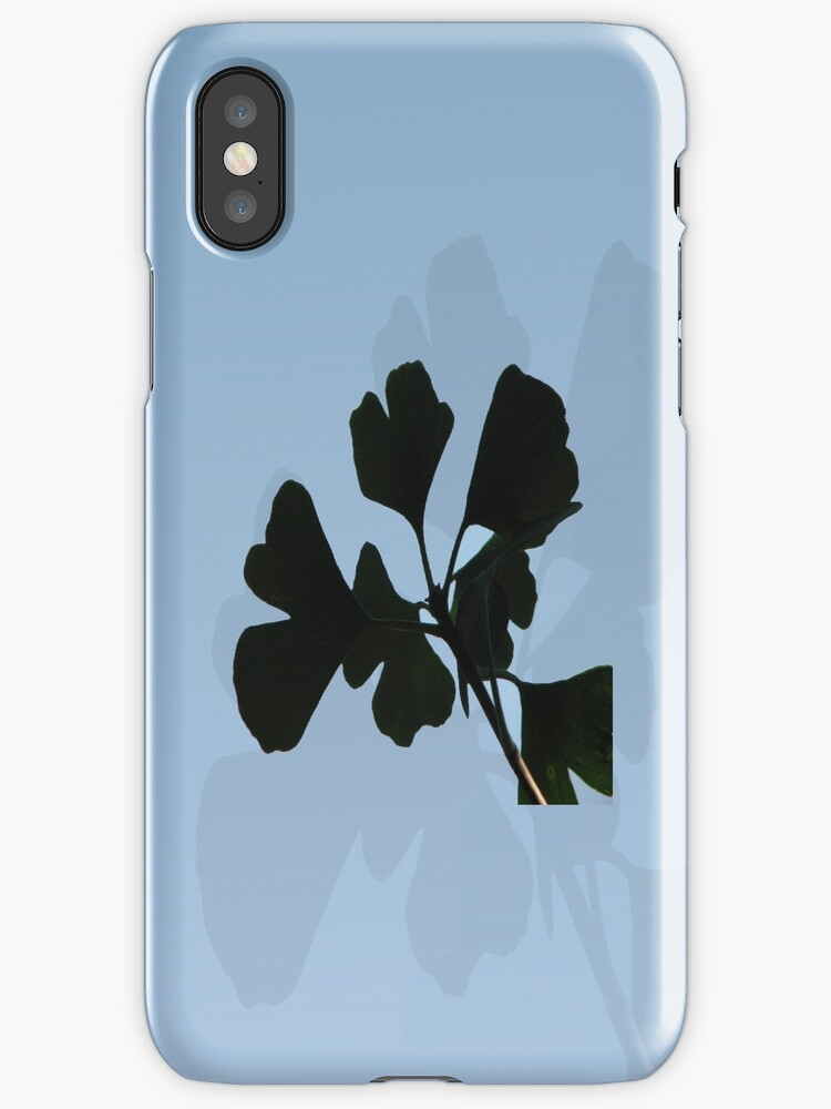 Ginko Biloba leaves against Sky by Weber Consulting