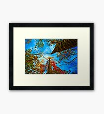 Up! Framed Print