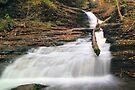 Huron Falls in Autumn Twilight by Gene Walls